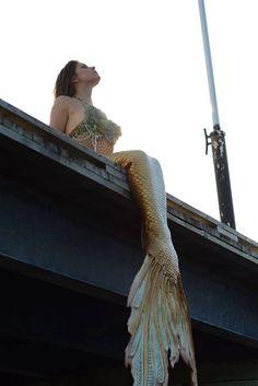Halifax mermaid silicone mermaid tail by Merbella studios inc Siren Mermaid, Mermaid Tale, Mermaid Kisses, Tattoo Mermaid, Real Mermaids, Mermaids And Mermen, Fantasy Mermaids, Fantasy Creatures, Mythical Creatures