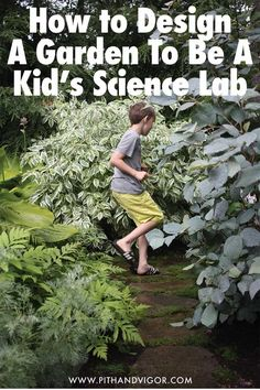 Learn to make your backyard into a fun and beautiful science lab for your kids.