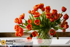 Tulips twisting and doing their thang!