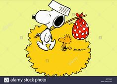 Snoopy & Woodstock Bon Voyage Charlie Brown (1980 Stock Photo ...