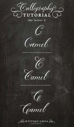 "Calligraphy Tutorial   the capital letter ""C""   Antiquaria   Bloglovin"