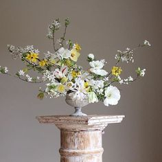 On the weather of floral type, with floral artist, instructor and writer Christin Geall of Cultivated Estilo Floral, Arte Floral, Ikebana, Floral Centerpieces, Floral Arrangements, Centrepieces, Floral Style, Floral Design, English Flower Garden