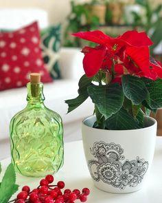 """49 kedvelés, 9 hozzászólás – Emese (@twinstahome) Instagram-hozzászólása: """"Sajnos a mikulásvirág mindig elhullajtja a leveleit karácsonyig, de hát annyira jól…"""""""