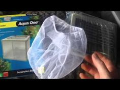 Tips for using a net breeder for baby fish.