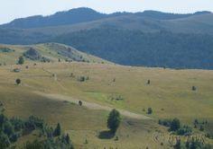 Muntele Baisorii, Cluj County, Romania Romania, Mountains, Nature, Travel, Naturaleza, Viajes, Destinations, Traveling, Trips