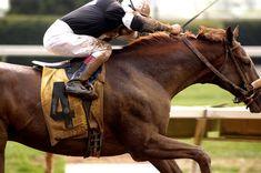 Keeneland. I <3 horse racing.