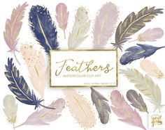 Watercolor Feather Clipart. Gold Watercolour Feathers. Mint | Etsy