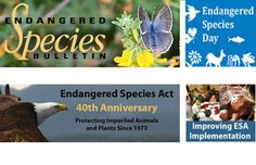 Endangered Species website - K-12, has interactive map that lets teachers research local endangered animals & plants. Includes online games.