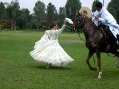 Caballos de Paso - Traditional Peruvian dance with horse