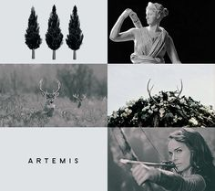 artemis was the greek goddess of the hunt, wild animals, wilderness, childbirth and virginity, and the protector of young girls. she was the daughter of leto and zeus, and the twin of apollo. artemis was often depicted as a huntress carrying a bow and arrows. the deer and the cypress were sacred to her.
