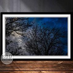 Downloadbares Bild, Digital Foto, druckbare Wandkunst, Raben, Silhouette, Baum, Wald, Himmel, toter Baum, Vogel, Blattlos, Wien, Österreich