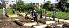 Urban Roots (documentary on small scale urban farming/gardening) announced that 45 Detroit Public Schools got gardens!