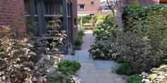 Natuurlijke tuinen zoals Cottage tuin of Stadstuin.