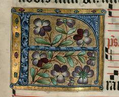 """Lettrine """"F"""" aux pensées (office de la fête de saint François  DATE :1500-1600 Détail extrait d'un manuscrit (Antiphonaire, BmN, Ms 437)"""