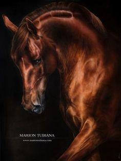 Marion Tubiana
