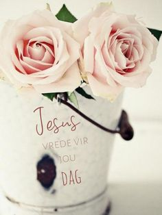 Goeie More, Afrikaans Quotes, Flowers, Pictures, Cartoon, Photos, Cartoons, Royal Icing Flowers, Flower