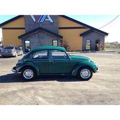 "@vw_parts's photo: ""Classic #Volkswagen Bug"""