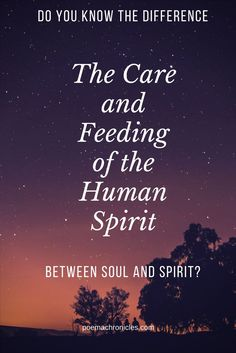 Learning to discern between the two is the difference between living and abundant living. #spirit #spirituality #spiritual #spiritualawakening #power #soul #life #blessing #newlife #inspire #inspirational #courage #love