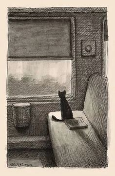 Black cat on white seat