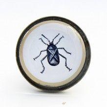 Bouton de meuble insecte cafard - Cabinet de curiosités