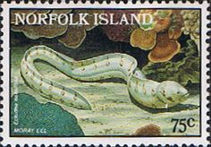 Norfolk Island 1986 Marine Life Set Fine Mint SG 381 Scott 380 Other European and British Commonwealth Stamps HERE!