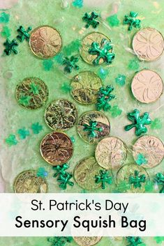 St. Patrick's Day Shamrock and Gold Coin Sensory Bag