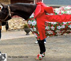 Christmas present Costume - The Horse Tailor