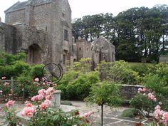 Rose garden at Compton Castle in Devon