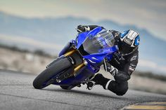2018 Yamaha Proven on track dominance, good looks, and reigning back-to-back MotoAmerica Championships. Yamaha Super Bikes, Yamaha Motorcycles, R6 For Sale, Yamaha Fz 07, Yzf R125, Supersport, Street Bikes, Sport Bikes, Super Bikes