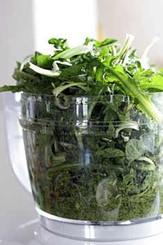 "Dandelion Greens Pesto. Cool Idea for something that's usually dismissed as ""just"" a weed."