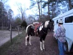 "Donna West shows as easy way to mount your horse by ""siding over"""