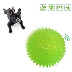 Dog Ball Toys Balls Interactive Dog Toy Squeaker Ball Bouncy Ball for Small to Medium Dogs Kailian -- To view further for this item, visit the image link. (This is an affiliate link) #DogToyBalls