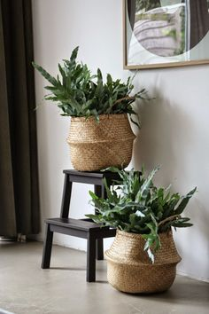 natural baskets, plants, interior plants, plants storage ideas, interior styling, decoration, deco, interior design, tendencias, plantas de interior, cestos para plantas