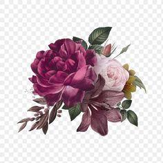 Rose Flower Png, Flower Art, Hibiscus Flowers, Cactus Flower, Exotic Flowers, Colorful Flowers, Free Watercolor Flowers, Flower Png Images, Burgundy Flowers