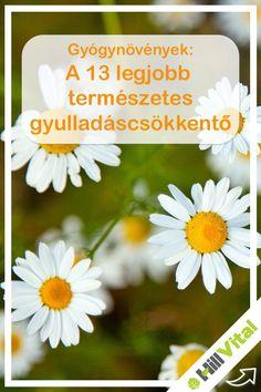 Remedies, Healing, Nutrition, Herbs, Medical, Vertigo, Plants, Gardening, Home Remedies
