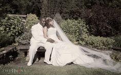 Bride and groom portrait in Renzie Park Rose Garden