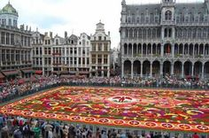 Once every two years, the Grand Place, a central market in Brussles, Belgium becomes one of the largest flower gardens in the world