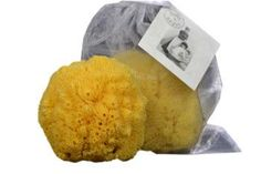 Boite a Savon - Large Fine Natural Sea Sponge