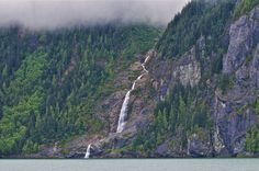 the Great Bear Rainforest Forests, British Columbia, Mists, Acre, Stretches, Salmon, Coastal, Rain, Canada