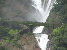 The Dudhsagar Falls is one of the most interesting falls of India and the largest and highest fall of Goa