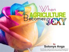 when Agriculture becomes sexy by sotonye anga http://www.authorstream.com/Presentation/sotonye-1892274-agriculture-becomes-anga-1ppt/ || #Agriculture