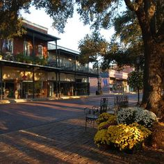 Take a stroll down the National Historic Landmark District of Natchitoches, LA (styled after New Orleans) - this main street overlooks the Cane River....very interesting town full of history, southern charm, fantastic food!