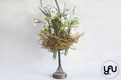 aranjament floral cu narcise _ cuib_yau concept_elena toader (1)