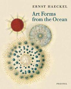 En aquesta obra, art i ciència es donen la mà. Un compendi delicat que fa d'aquest llibre una de les obres més estranyes del seu autor i del món de la il·lustració científica en general.