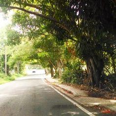 Lajas streets
