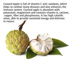 #Health Benefits of #Custard #Apple #Ayurveda #Livermore #Herb #supplements www.sandhuproducts.com