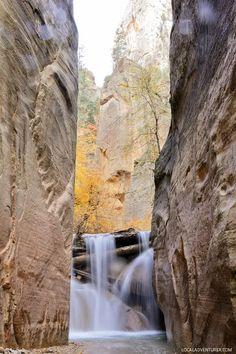 North Folk Falls Zion National Park