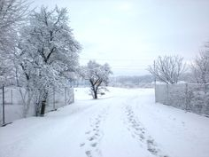 my hometown, winter time, Mokre Lazce, Czech Republic