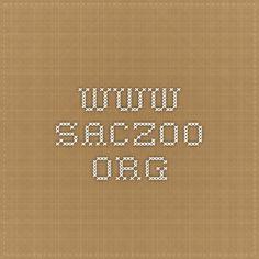 www.saczoo.org
