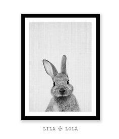 Rabbit Print Woodlands Nursery Art Rabbit Wall Decor by LILAxLOLA